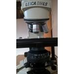 BRUGT: Leica trinocular lysmikroskop